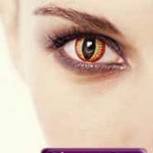 Глаза в оправе февраля